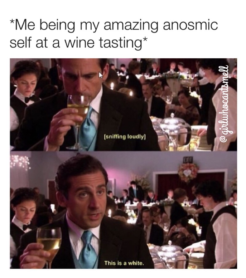 Anosmics at a wine tasting meme